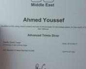ahmedyoussef