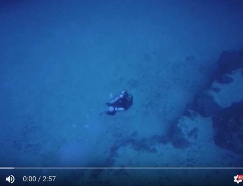 Video – Diving The Gulf Fleet 31
